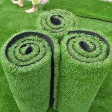 北京卖塑料草坪厂家假草坪价格
