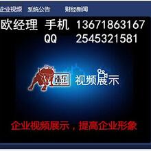 广东-大宗商品交易系统定制出租
