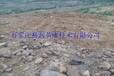 广西河池滴灌设备现货出售/量大从优
