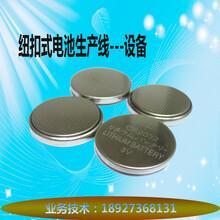 锂电CR2032纽扣电池自动化生产线整套设备