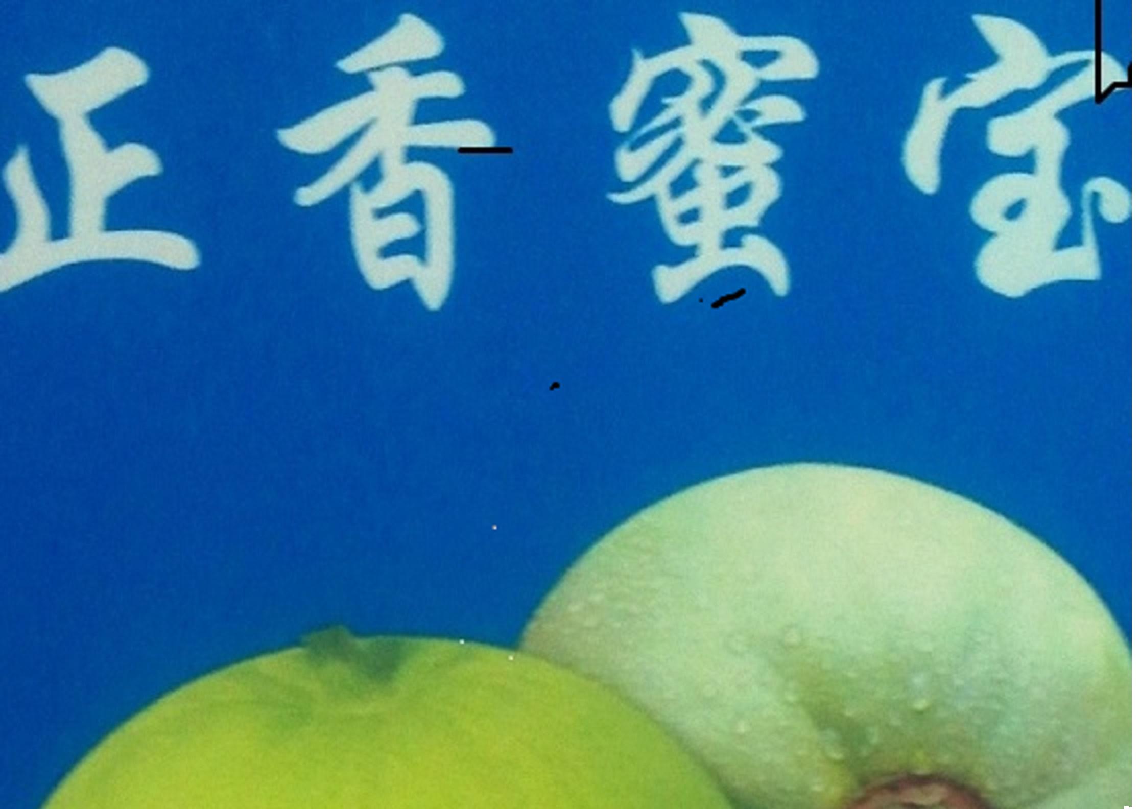 壁纸 海底 海底世界 海洋馆 水族馆 2232_1584