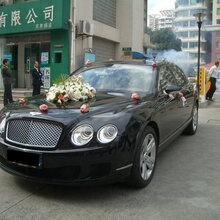 郑州跑车秀兰博基尼法拉利宾利玛莎拉蒂悍马保时捷911宝马3系奥迪TT奥迪R8敞篷婚车出租