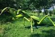 亚马逊森林昆虫展来袭昆虫模型出租昆虫道具展览租