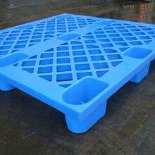 西安九角塑料托盘常用规格