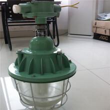 八方机械供应BCD-250400白炽灯1