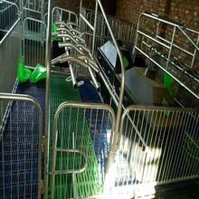 新型猪用产保两用床,产保一体床,新式改良母猪产床仔猪保育床两用型,养猪设备