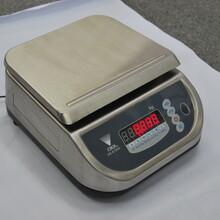 寺岡DS-673SS防水計重秤圖片