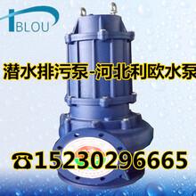 利欧QW/QW潜水排污泵立式切割污水泵泥浆泵50WQ40-15-4潜水渣浆泵吸沙泵清淤化粪泵