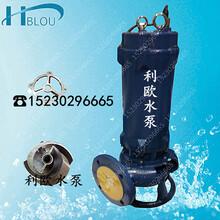 利欧WQK30-15立式潜水切割泵潜水搅匀排污泵泥浆泵液下渣浆泵吸沙泵污水泵