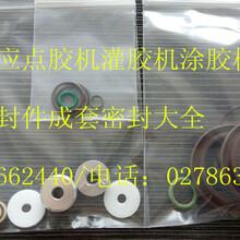 深圳专业生产各种类型点胶机、灌胶机、涂胶机、打胶机、刷胶机成套密封件厂家直销