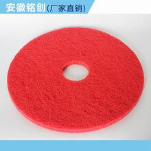 铭创原装洗地机打磨垫百洁垫刷盘垫盘刷垫