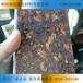 杭州理石漆一体板杭州氟碳漆一体板杭州金属漆一体板杭州外墙保温装?#25105;?#20307;板