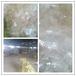 燙金膜清洗設備、反光膜鍍鋁膜專用清洗線