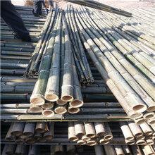 批发2米2.5米3米4米5米6米竹竿尖毛竹尖