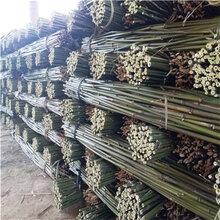 2米细竹竿2米细竹子