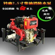 2.5寸手抬式柴油机消防水泵