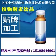 50ml蓝莓果味酵素饮料ODM代加工贴牌灌装生产厂商