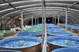 歐麥朗水產養殖恒溫熱泵空氣能養殖熱泵養殖專用恒溫熱水設備