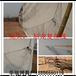 尼龙斑鸠网304.5米丝网加工定做厂家直销各种材质防护网