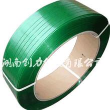创力包装供应环保砖新型PET塑钢带打包带