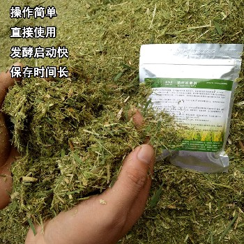 青儲玉米秸稈用益加益發酵劑效果好