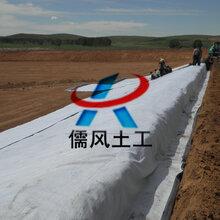 供应綦江区赶水镇1.5mm垃圾场防渗膜防水毯