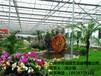 玻璃溫室-展覽溫室-生態餐廳溫室