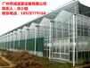专业搭建温室团队一对一服务河源玻璃温室大棚建设