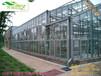 工程案例-贵州龙里县——玻璃温室