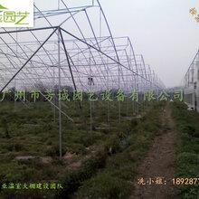 新型大棚-大棚建设-温室大棚厂家
