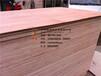 全整芯胶合板包装胶合板整芯包装板环保胶合板9夹板
