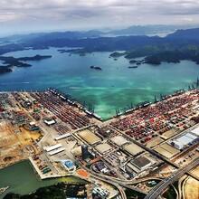斯里兰卡红茶香港进口清关代理红茶进口需要什么单证图片
