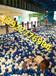 广东韶关大型波波球池费用儿童游乐设备厂家