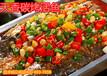 哪里的烤鱼最好吃?潍坊醉炉烤鱼技术加盟在哪里