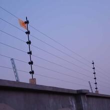 谁家是专业安装电子围栏的