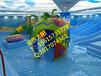 水育早教戏水池大型儿童游乐池