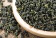 汲越大南山乌龙茶具备着二者合一绿叶红镶边的美誉