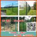 清远景区框架防护围网白云机场围栏网佛山绿化带隔离栅