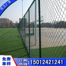 广州浸塑球场隔离网珠海不锈钢防护栏现货双边丝防护栏