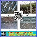 厂家热销:铝丝美格网片~金属菱形网片出口~动物用防护网~防盗网