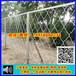 韶关铁丝网片厂家~铝合金美格网~美格网防盗窗~广州铝网护栏网