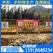 珠海临边护栏现货_工地深基坑围栏网_潮州建筑安全防护网批发价格