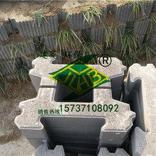 南阳建菱护坡砖403010、生态河道护坡砖、现货直销量大从优图片