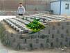 河南舒布洛克453010河道护坡砖厂家供货、联锁式护坡砖、专业生产、品质保证