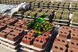 河南建菱砖挡土墙混凝土453015水泥砌块挡土墙砖、自嵌式挡土墙性价比高