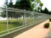儋州鋅鋼護欄廠家定做隔離圍欄鐵藝護欄現貨批發別墅區圍欄圖片