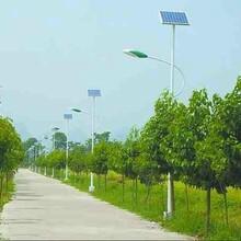 河北楷举2017年新款供应新乡市新乡县太阳能路灯厂家