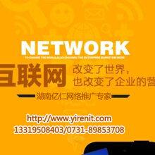 网络推广是益阳教育培训行业发展合适的帮手