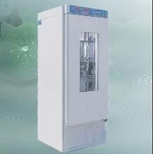 青岛路博厂家直销水质实验室LB-系列BOD生化培养箱