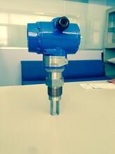 测量氨水专用WS-C-MD音叉式在线浓度计图片